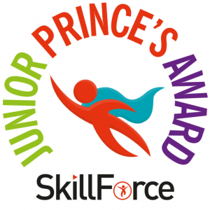SkillForce Junior Prince's Award